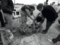 Barfleur-pêche